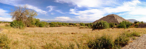 Panoramablick bei Teotihuacan mit Bäumen und Pyramide des Sun Stockbild