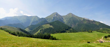 Panoramablick Belianske Tatry, Slowakei, Europa Lizenzfreie Stockfotos