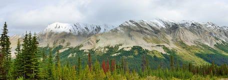 Panoramablick der alpinen Landschaft entlang der Icefields-Allee zwischen Jaspis und Banff auf Kanadier Rocky Mountains Stockbilder