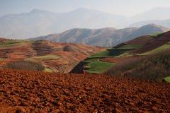 Panoramablick der chinesischen Landwirtschaftslandschaft mit Bergen und Hügeln Stockfotografie
