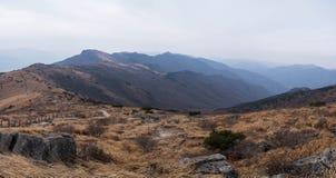Panoramablick der Gebirgsebene mit silbernem Gras Stockbild