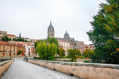 Panoramablick der historischen Stadt von Salamanca mit Rio Tormes Stockbild