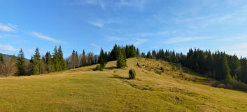 Panoramablick der Waldlichtung in den Bergen Stockfotos