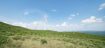 Panoramablick der Windenergie Stockbild
