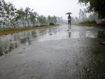 Panoramablick des Regens Lizenzfreie Stockbilder