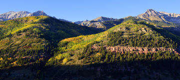 Panoramablick des Schnees bedeckte Berge und gelbe Espe Stockfotos