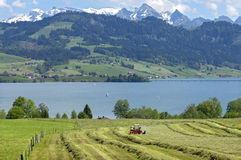 Panoramablick des Schweizer Bergdorfes in den Alpen lizenzfreie stockfotos