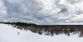 Panoramablick des Skifahrers hinunter den Hügel im Wald Lizenzfreie Stockbilder