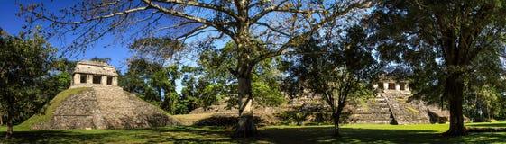 Panoramablick des Tempels der Zählung, Palenque, Chiapas, Mexiko Lizenzfreie Stockfotos