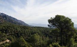 Panoramablick von Bergen und von Waldweg an Montserrat-mounta Stockfoto