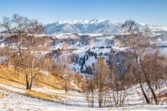 Panoramablick von Bucegi-Bergen, Ansicht von Pestera, Brasov, Siebenbürgen, Rumänien stockbild