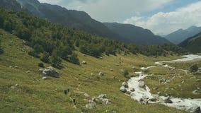 Panoramablick von der oben genannten Berglandschaft Wandern des Berges lizenzfreie stockfotos