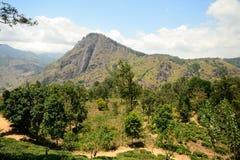 Panoramablick von Ella Felsen, Sri Lanka Stockbild