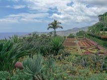 Panoramablick von Funchal und von bunten Anlagen im Frühjahr auf Madeira-Insel lizenzfreie stockbilder