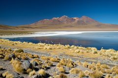 Panoramablick von Laguna de Canapa mit Flamingo, Bolivien - Altiplano stockfoto