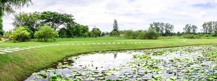 Panoramablick von Lotosteich mit Zementwegweise Stockbilder