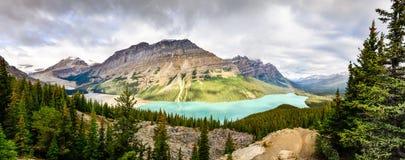 Panoramablick von Peyto See und von felsigen Bergen, Alberta Lizenzfreie Stockbilder