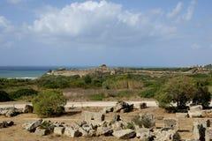 Panoramablick von Selinunte-Akropolise Lizenzfreie Stockbilder