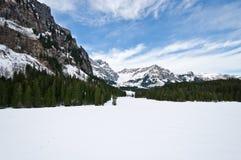 Panoramablick von Urner-Alpen lizenzfreies stockfoto