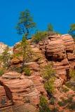 Panoramablick von Zion National Park, Utah Lizenzfreies Stockbild