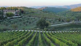 Panoramablicke der Hügel und Land wine in Toskana stock video