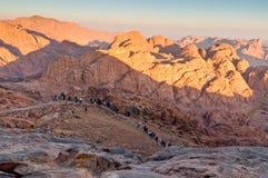 Panoramafelsen des Berg Sinais am frühen Morgen Lizenzfreies Stockbild