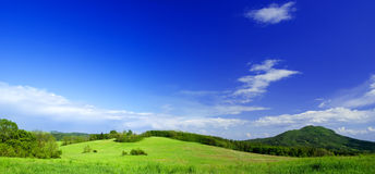 Panoramafoto der Wiese. Stockbild