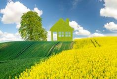 Panoramafrühlings-Grünfeld, das Konzept des grünen, ökologischen Hauses gebaut von den Blättern Stockfotos