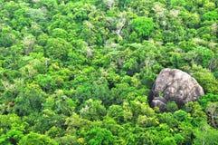 Panoramafrom锡吉里耶, Sinhagiri在Dambulla,斯里兰卡 免版税库存图片