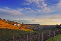 Panoramahügel von ipplis friuli Italien Stockbild