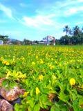 Panoramakuta Lombok royalty-vrije stock foto's