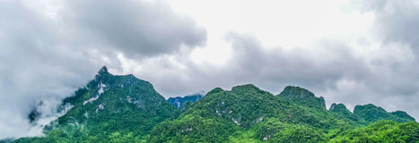 Panoramalandschaft Grüne Naturlandschaft der Asphaltstraße stockfotografie