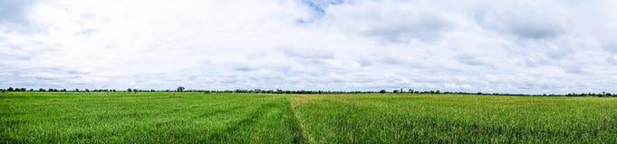 Panoramalandschaft Schöne erneuernde Wolke des blauen Himmels Stockbilder