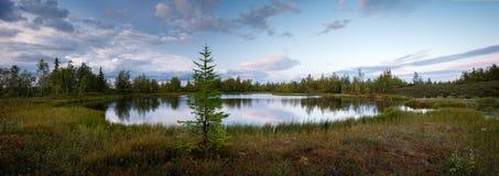 Panoramalandskap av solnedgången på sjön, norr som är siberian, tundra arkivfoto