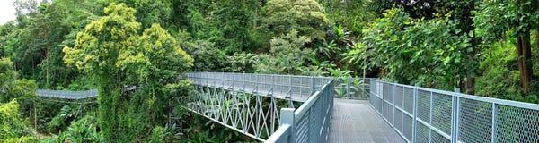 Panoramamening van de Gang van de Boomluifel, de Ijzerbrug in tro Royalty-vrije Stock Afbeeldingen
