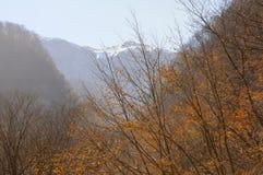 Panoramas de monta?as de bosques y de los lagos azerbaijan caucasus foto de archivo libre de regalías
