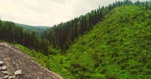 Panoramasatellietbeeld op bossatellietbeeld van bij de landweg in bosweergeven van de hommel in Taiga Antenne van het vliegen stock video