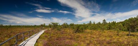 PanoramaSchwarzes hed, Rhoen arkivbilder