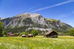 Panoramasikt av fjällängarna och Bluemlisalpen på den fotvandra banan nära Kandersteg på Bernese Oberland i Schweiz Royaltyfri Fotografi