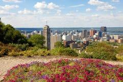 Panoramasikt av Hamilton, Kanada Arkivbilder