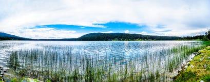 Panoramasikt av Peter Hope Lake i den Shuswap Skotska högländerna i British Columbia, Kanada fotografering för bildbyråer