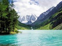 Panoramasikt av sjön Arkivbild