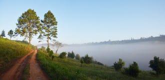 Panoramasikten från Phu badar Berk, Petchabun, Thailand Fotografering för Bildbyråer