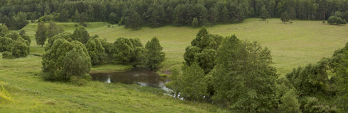 Panoramaskogflod Royaltyfria Foton