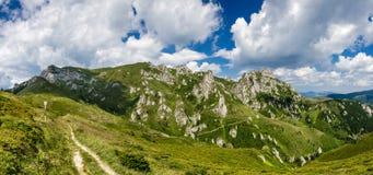 Panoramasommar för Carpathian berg, Rumänien Arkivbild