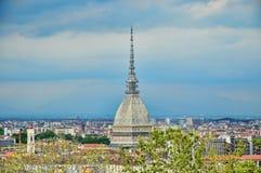 Panorama av Turin med molen Antonelliana Royaltyfri Fotografi