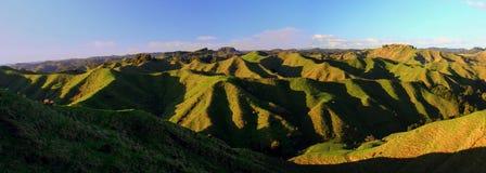 Panoramatic青山在新西兰 免版税库存图片