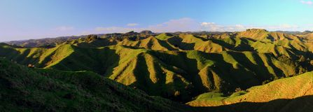 Panoramatic green hills in New Zealand. Panoramatic picture of green hills with steep sharp slopes during sunny day in winter time in New Zealand Royalty Free Stock Image