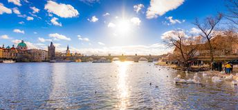 Panoramatic view of Prague Charles bridge near the Vltava river. Swan on the river. Prague is czech capital and important tourist stock images