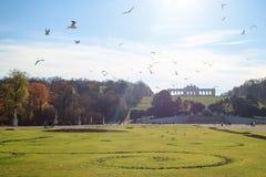Panoramautsikt av belvederen av Wien i höst fotografering för bildbyråer